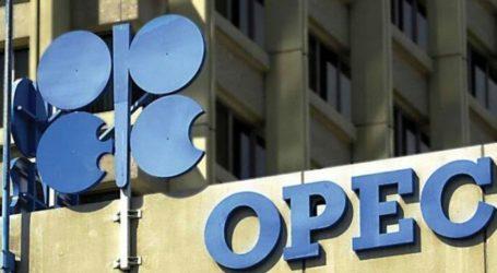 OPEC Gelar Pertemuan Darurat Bahas Stabilitas Harga Minyak