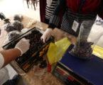 Orang Gaza Menganggur (Oleh: Fedaa Al-Qedra, Gaza)