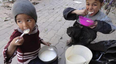 WPF : 9,3 Juta Orang di Suriah Rawan Pangan