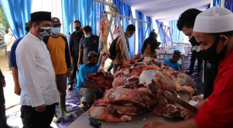 Wagub DKI Tinjau Pelaksanaan Pemotongan Hewan Qurban