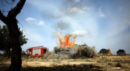28 Titik Kebakaran Akibat Balon Kepulangan di Sekitaran Gaza