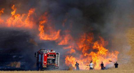 Balon Pembakar dari Gaza Bakar Puluhan Area Permukiman Ilegal Yahudi