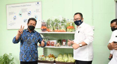 Wamenhan Minta IPB University Bantu Kembangkan Pertanian Singkong dan Sagu