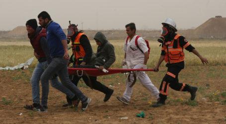 Pandemi Menambah Parah Luka Pemuda Gaza (Oleh: Hana Adli, Gaza)