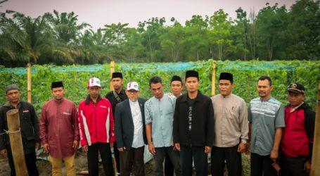 Imaam Yakhsyallah Kunjungi Kebun Ketahanan Pangan Lampung Timur