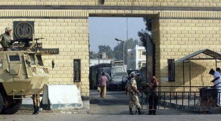 75 Persen Tahanan Penjara Tora Mesir Mogok Makan