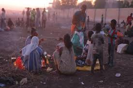 UNHCR Peringatkan Krisis Kemanusiaan Akibat Konflik di Ethiopia