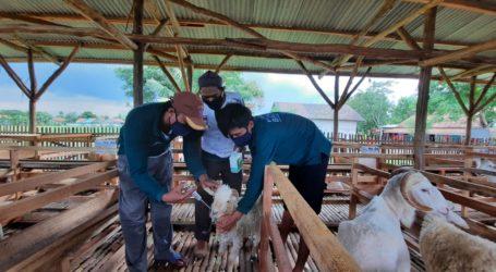 UPZ BNI, Bamuis, dan BAZNAS Luncurkan Balai Ternak di Bekasi