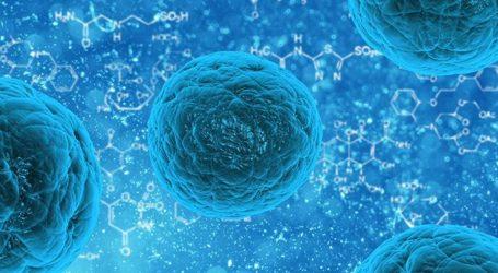 China Kembali Catat 115 Kasus Baru Virus Corona