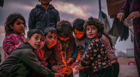 UNICEF: 12.000 Anak Suriah Tewas Akibat Perang Saudara