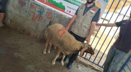 AWG Salurkan Daging Kurban untuk Warga Palestina di Gaza