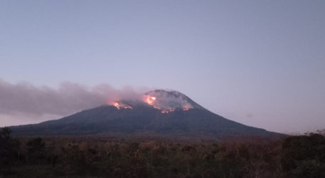Lontaran Lava Pijar Erupsi Gunung Ile Lewotolok Sebabkan Kebakaran Hutan