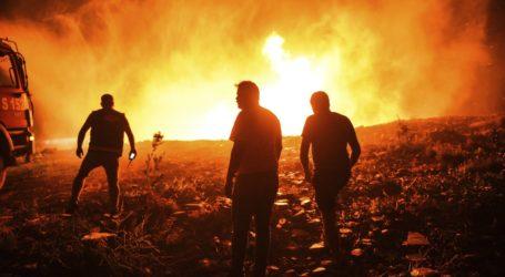 "Turki Deklarasikan ""Daerah Bencana"" Saat Korban Tewas Kebakaran Hutan Meningkat"