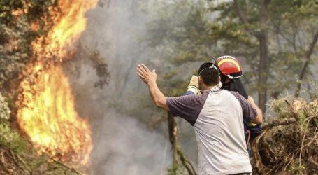 Negara-Negara Arab Bantu Padamkan Kebakaran Hutan Yunani