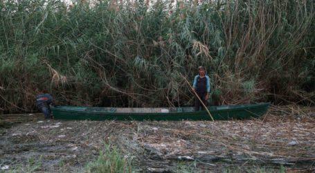 Irak Kurangi Area Pertanian Hingga 50 Persen Akibat Kekurangan Air