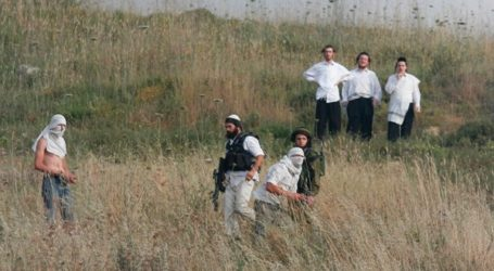 Puluhan Pemukim Yahudi Serang Petani Palestina Saat Panen Zaitun